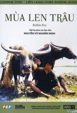 Mùa Len Trâu (The Buffalo Boy)